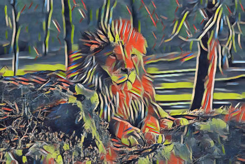 lion photo turned into picasso painting
