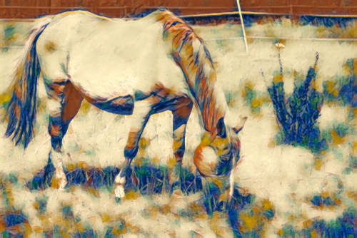 photo of horse converted to Cezanne painting