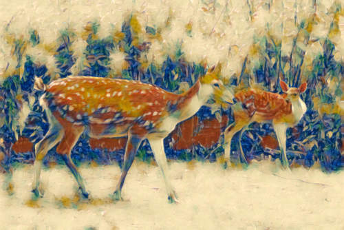 pic of two deer made into Cezanne painting