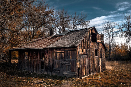 Barn in woods